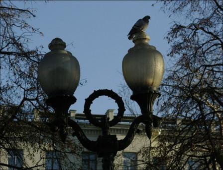 Тверской бульвар 2009 год