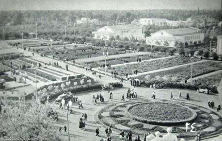 Растениеводство 1954_овощи