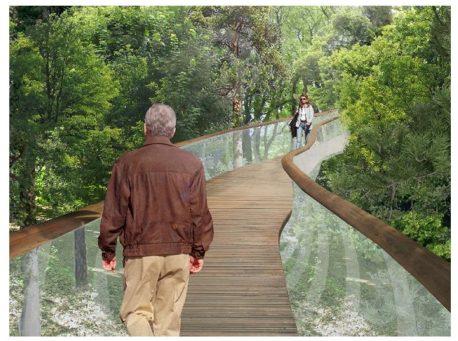 Мост в Шереметевской дубраве – объекте культурного наследия, остатке усадебных угодий, некогда принадлежавших владельцу Останкино Шереметеву
